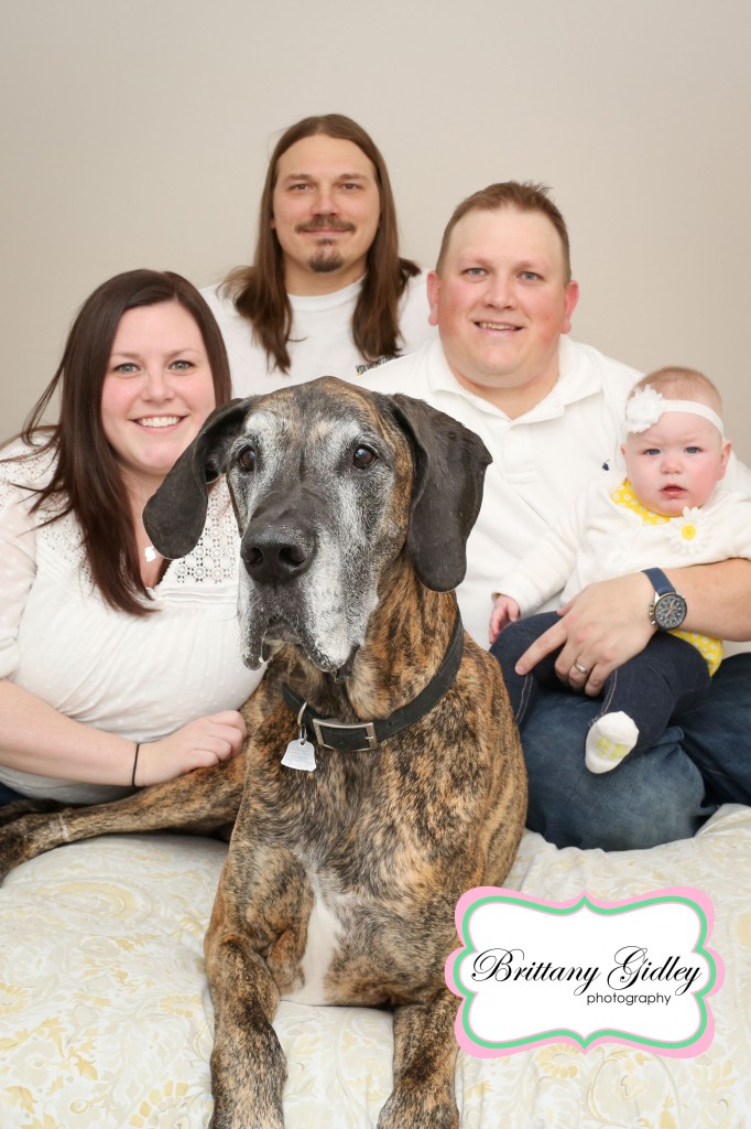 Great Dane With Family | Brittany Gidley Photography LLC
