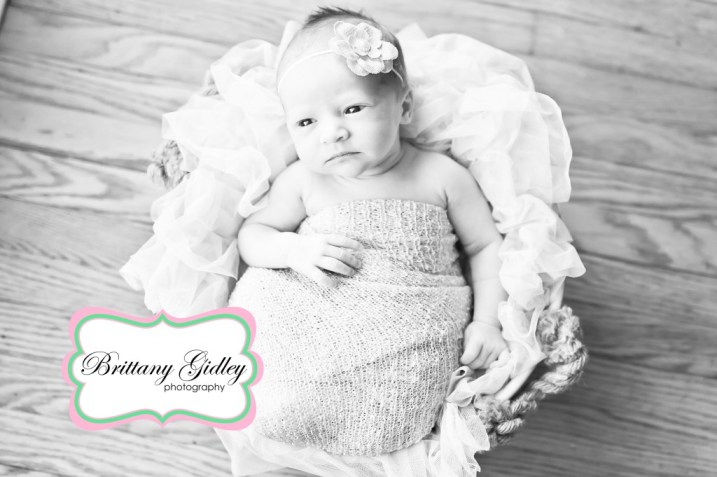 Canton Ohio Newborn Photographer | Brittany Gidley Photography LLC