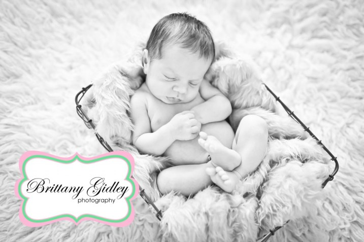 Newborn Boy | Brittany Gidley Photography LLC