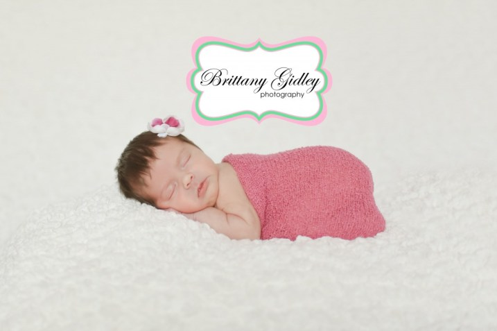 Professional Newborn Baby Photographer | Brittany Gidley Photography LLC