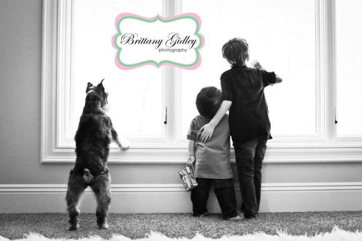 Dog Window | Brittany Gidley Photography LLC