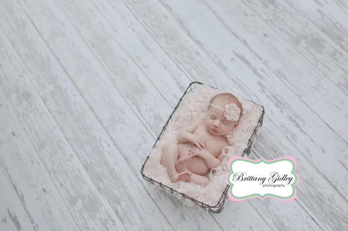 Newborn Pictures | Brittany Gidley Photography LLC