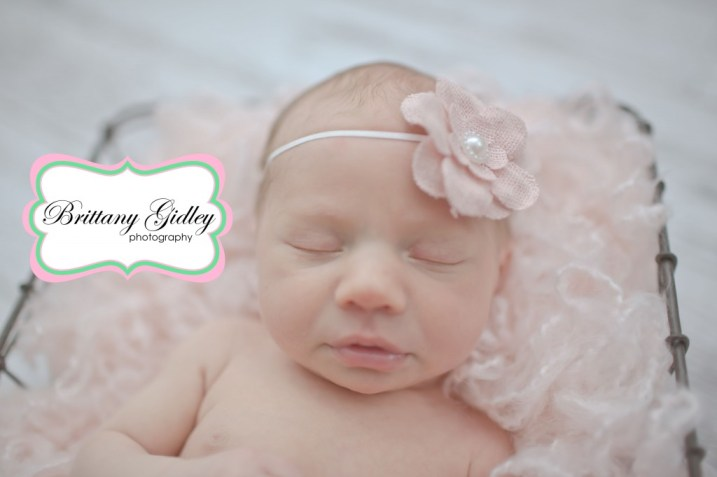 Neutral Newborn Photography | Brittany Gidley Photography LLC