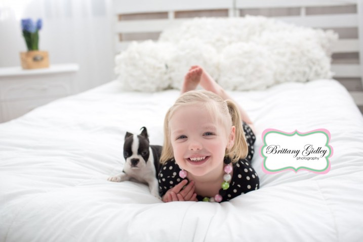 Boston Terrier Puppy | Brittany Gidley Photography LLC