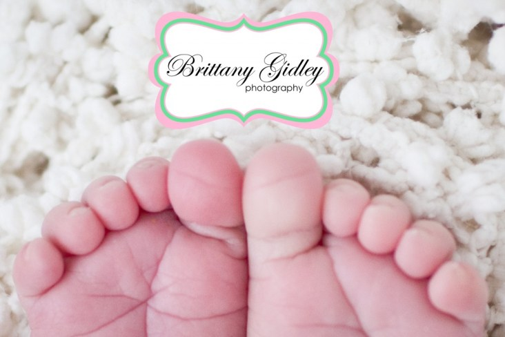 Newborn Specialist | Brittany Gidley Photography LLC