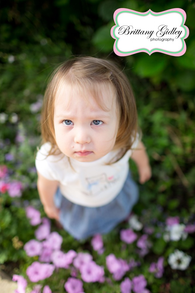2 Year Old Toddler | Brittany Gidley Photography LLC