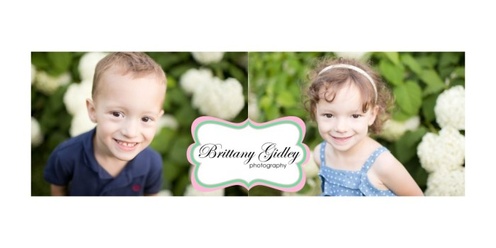 Twins | Family Photography | Brittany Gidley Photography LLC