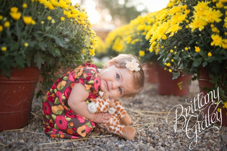 12 Month Baby | Mums | Fall | Autumn | Ohio | Brittany Gidley Photography LLC