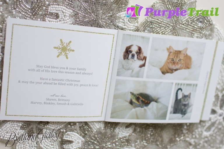 PurpleTrail.com | Christmas Cards | Booklet Card | Booklet Style Card | PurpleTrail