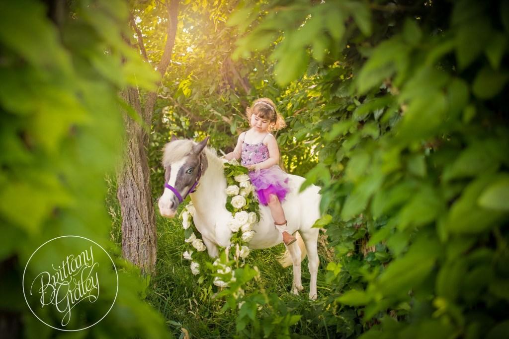 Pony Princesses   Dream Session   Pony Farm