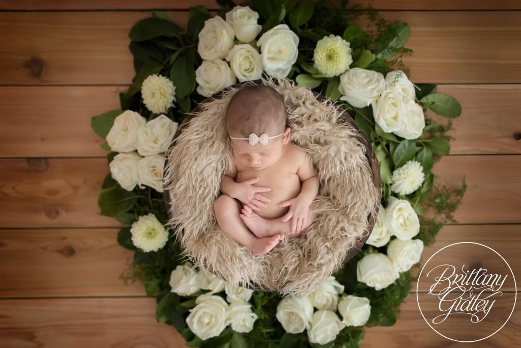 Introducing Grace   Best Newborn Photographer