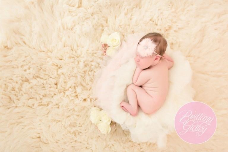 Cleveland Newborn Photographer | Baby Photography | Newborn Posing