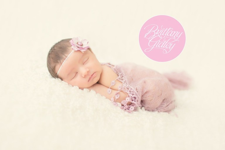 Lavender | Newborn | Brittany Gidley Photography LLC | Start With The Best