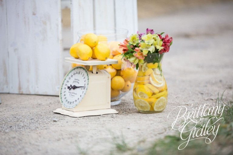 Juice Stand | Lemonade | Photo Shoot | Dream Sessions | Cleveland Ohio | Brittany Gidley Photography LLC