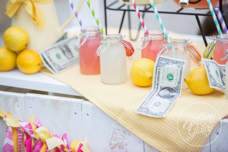Juice Stand | Lemonade | Photo Shoot | Photography Inspiration | Dream Sessions | Cleveland Ohio | Brittany Gidley Photography LLC