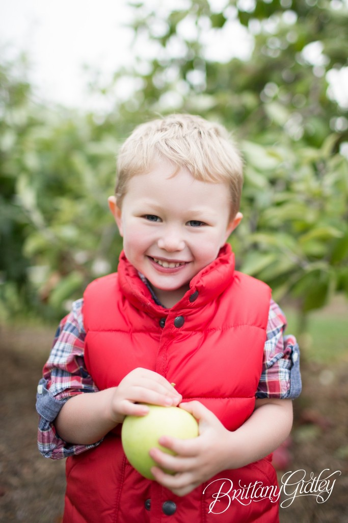 Cleveland Ohio | Photo Shoot | 12 Month Baby | Apple Orchard | Siblings | Big Brother