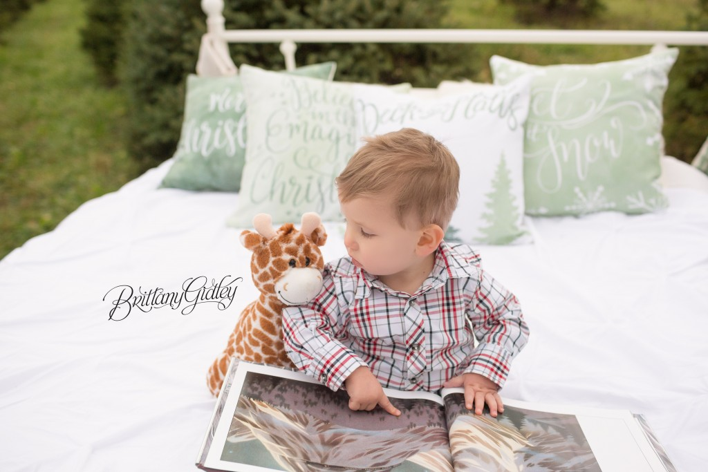 Tree Farm Dream Mini Sessions-38