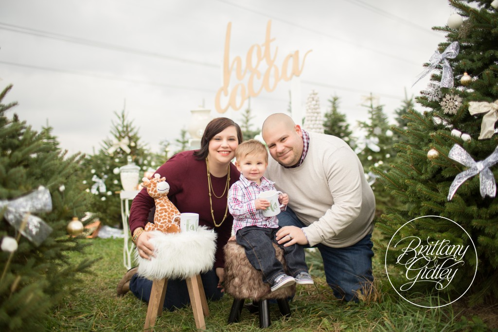 Tree Farm Dream Mini Sessions-39