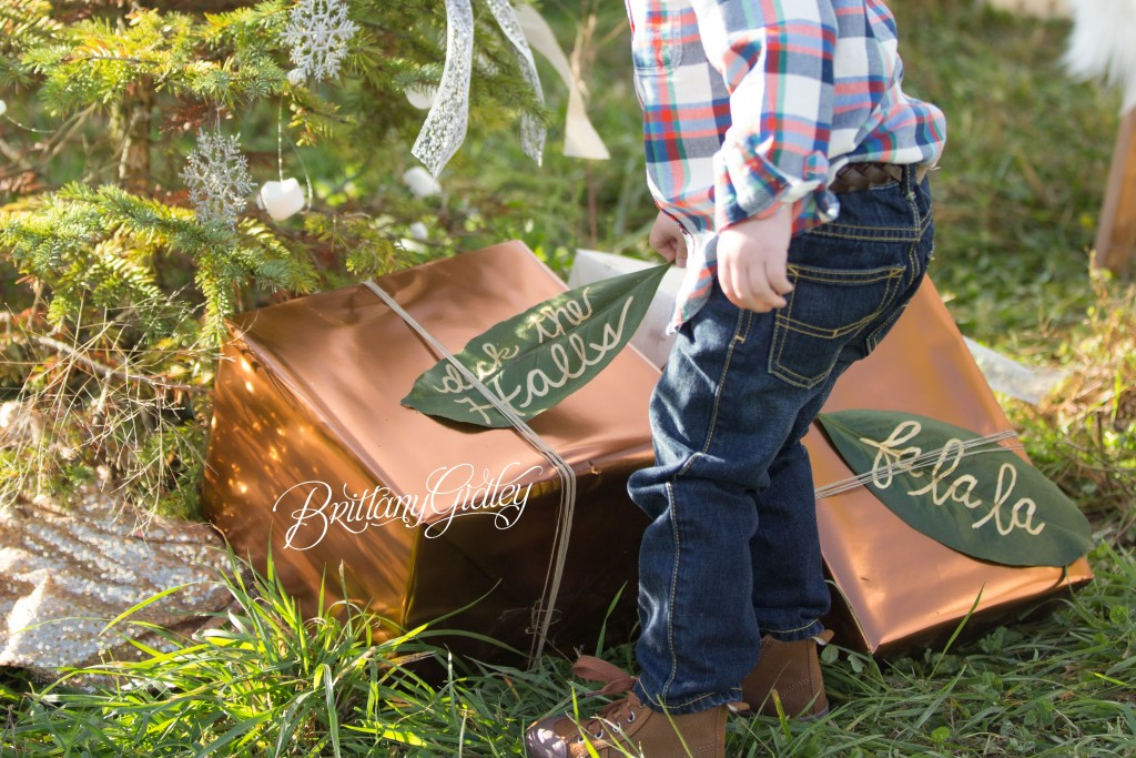Tree Farm Dream Mini Sessions-7