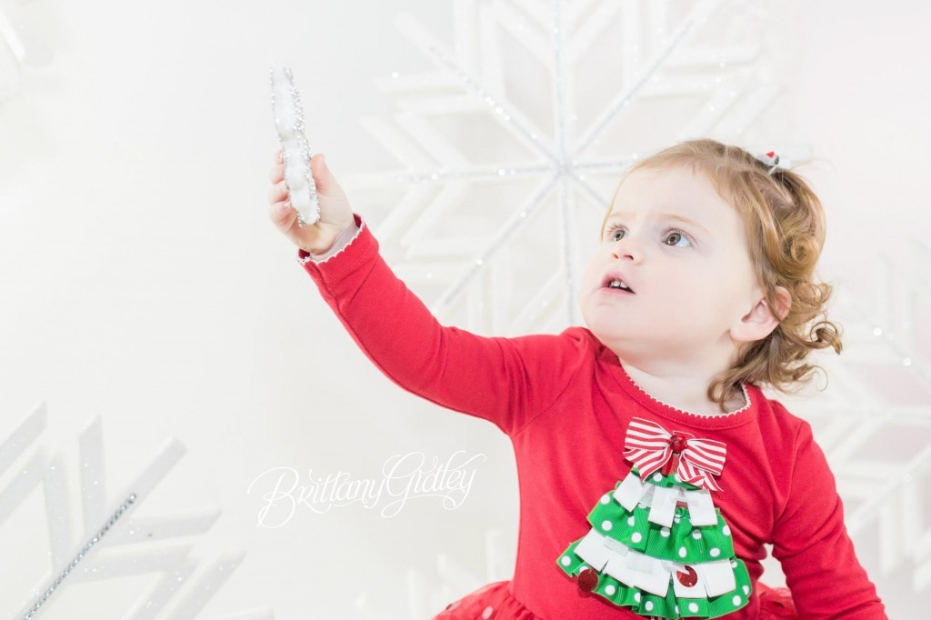 Cleveland Christmas Mini Sessions-22