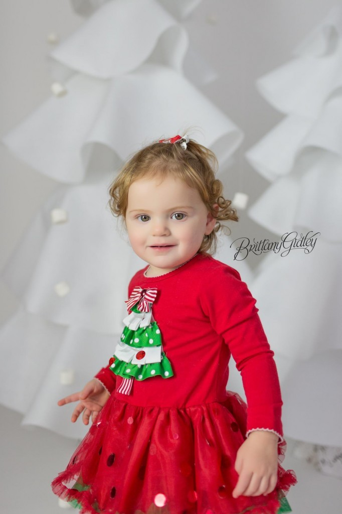 Cleveland Christmas Mini Sessions-24