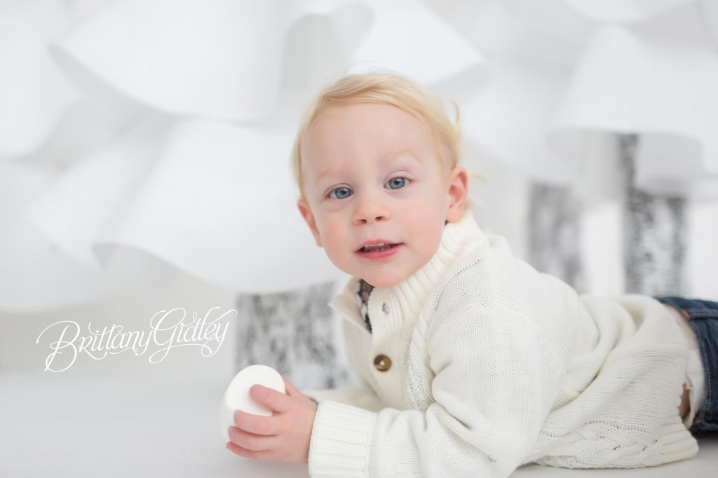 Cleveland Christmas Mini Sessions-42