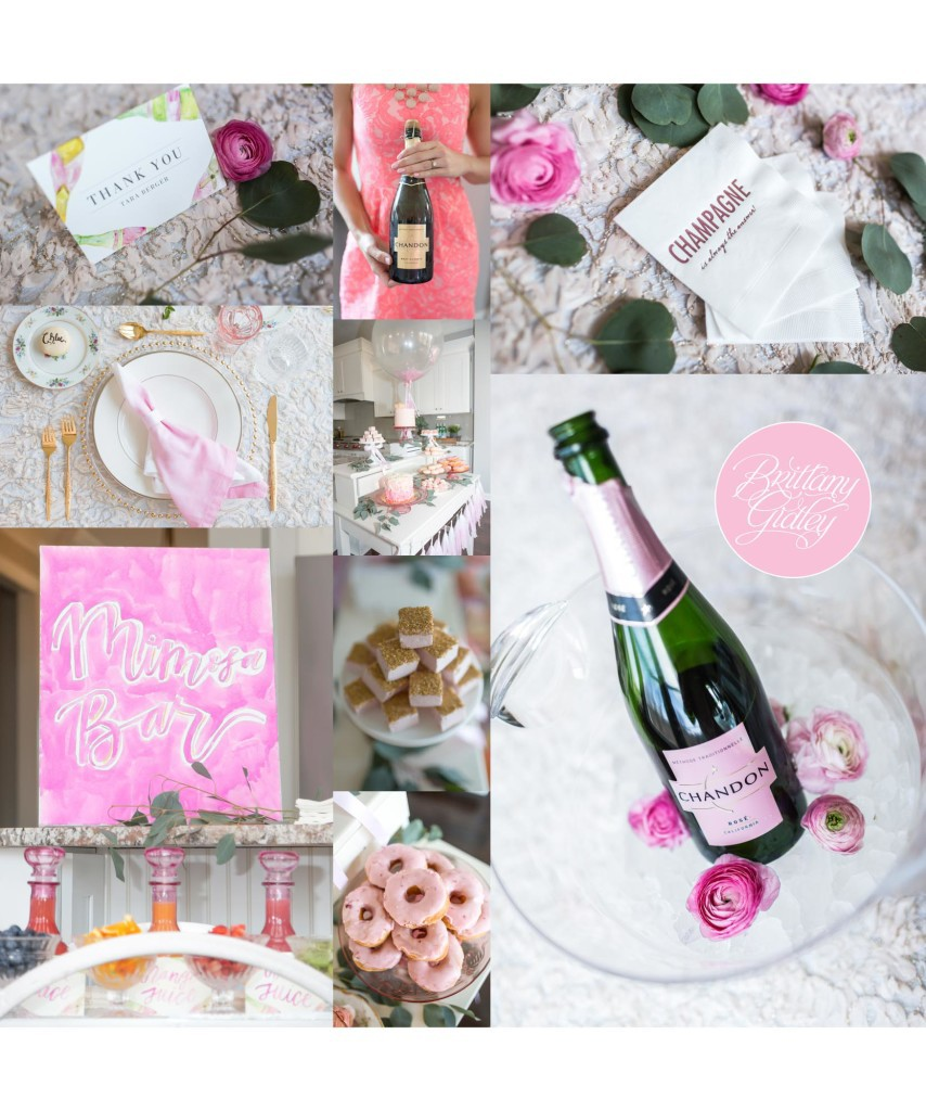 Mommy & Me Session | Ladies Who Brunch | Styled by One Stylish Party | Inspiration | Start With The Best | Brittany Gidley Photography LLC