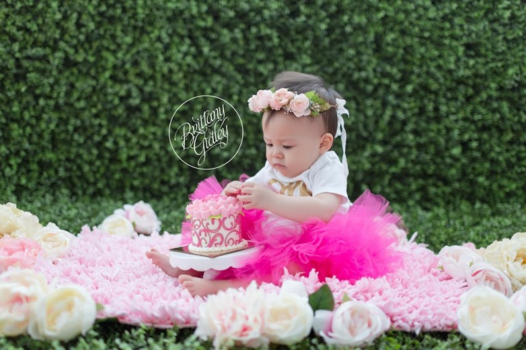 Cake Smash | Baby Photographer | Cleveland, Ohio | Start With The Best | Brittany Gidley Photography LLC