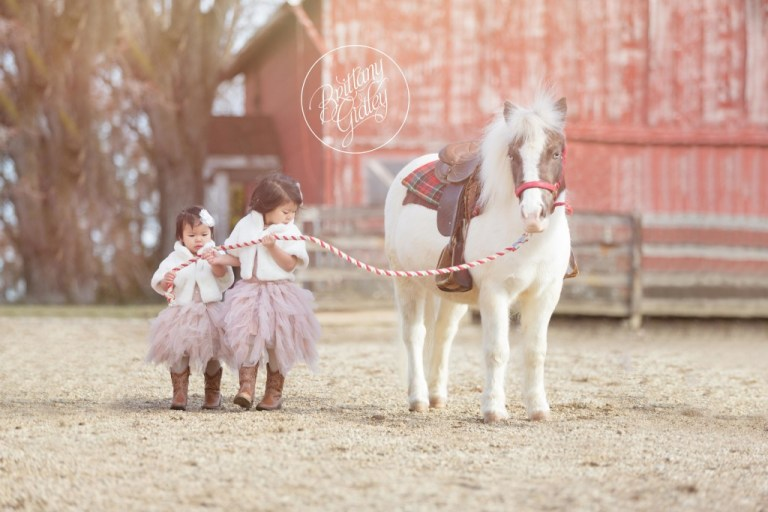 Whimsical Child Photographer | Sisters | Rainey's Closet | Pony Farm | Tutu Du Monde | Start With The Best | Cleveland Ohio | Farm | Equine | Horse Photo Shoot