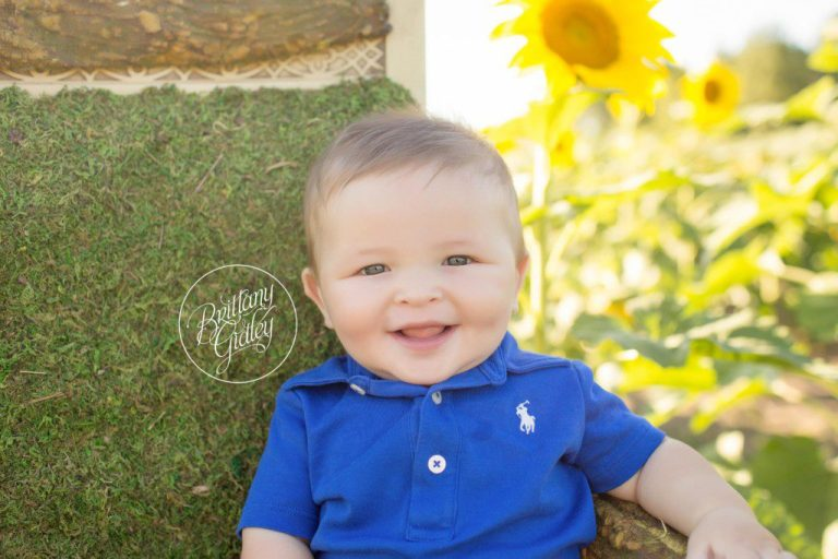 Prayers From Maria Sunflower Field | 6 Month Baby Photographer | Avon Ohio