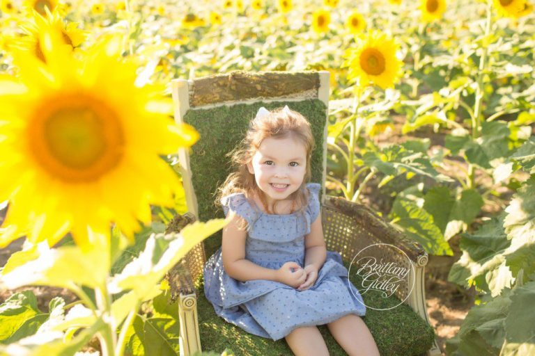Prayers From Maria Sunflower Field | Toddler Photographer | Avon Ohio