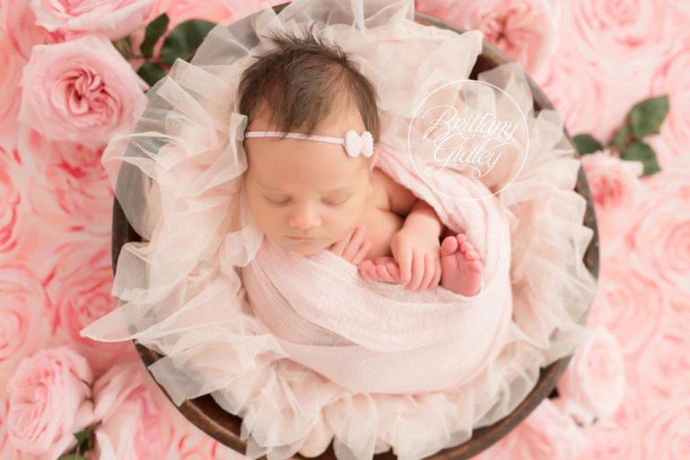 Newborn Dream Session | HeatherLily Florals | Newborn Photographer | Newborn Photography | Dream Photographer