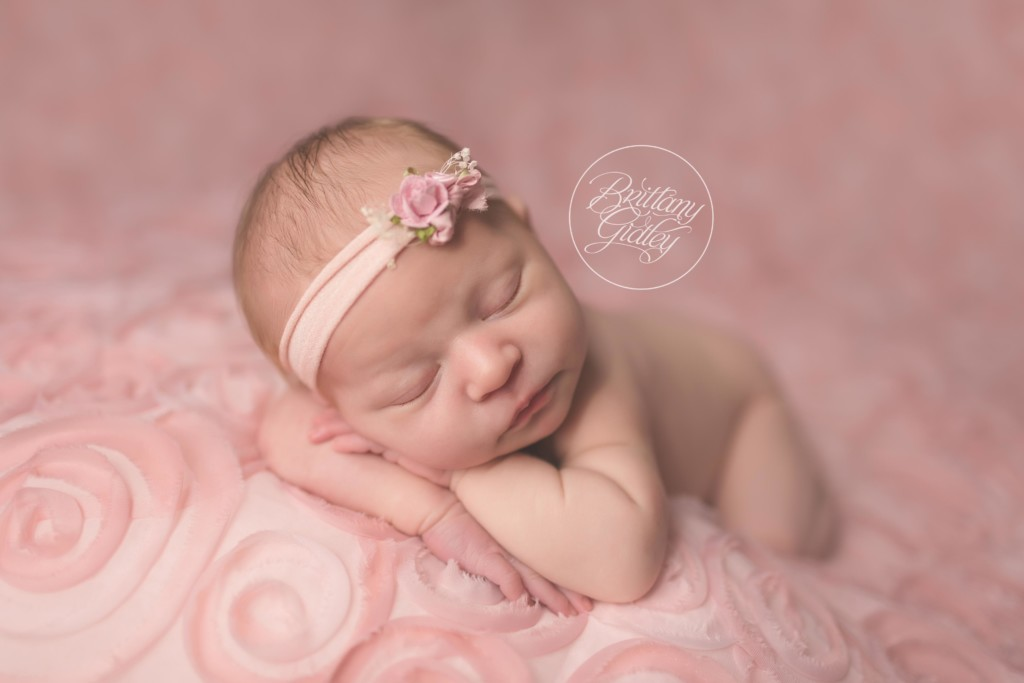 Cleveland Newborn | Introducing Ellie