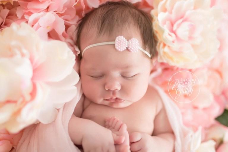 Flower Wall | Newborn Baby Girl | Cleveland