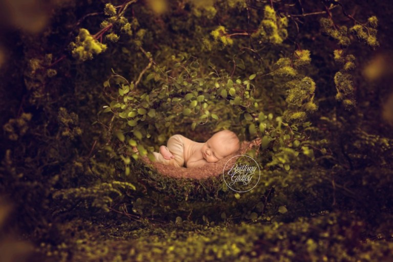 Baby Photographer | Composite Newborn | Start With The Best | Brittany Gidley | www.brittanygidley.com