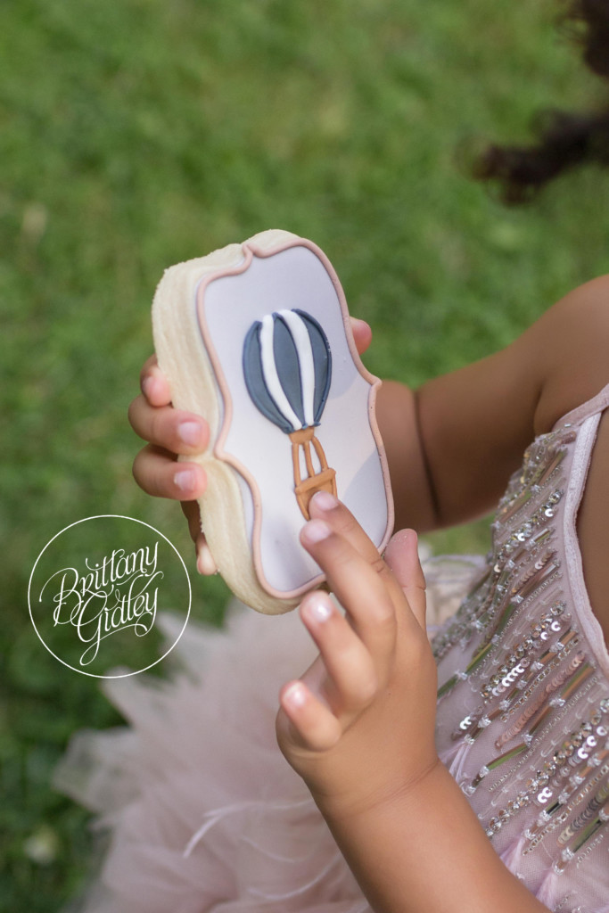 Hot Air Balloon Cookies | Photo Shoot | Dream Session | Vintage Travel Theme Photo Shoot