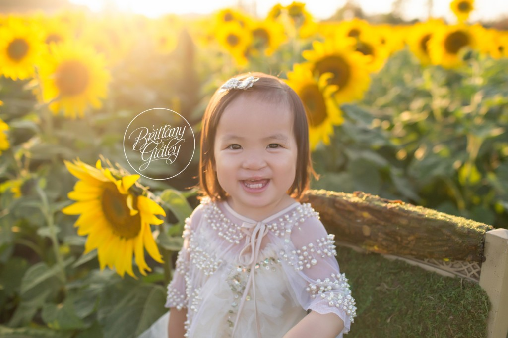 Bay Village Family Photographer | The Matty Family | Prayers From Maria Sunflower Field