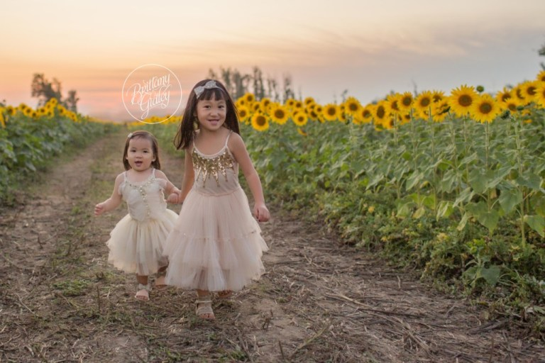 Bay Village Child Photographer | Prayers From Maria Sunflower Field | Sunflower Field Avon Ohio | Whimsical Child Photography