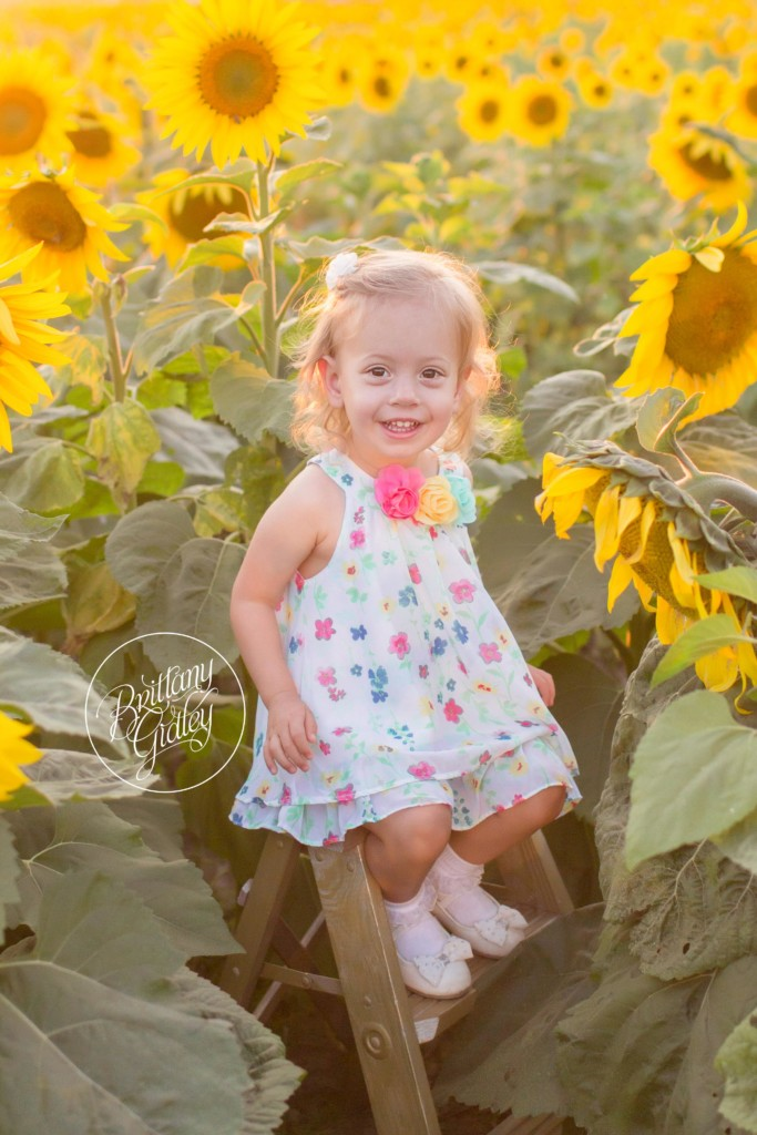 Beachwood Family Photographer | Abby 2 Years | Prayers From Maria