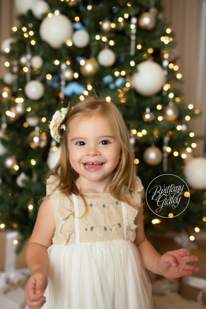 Family Poses In Front of Christmas Tree | Brittany Gidley Photography LLC