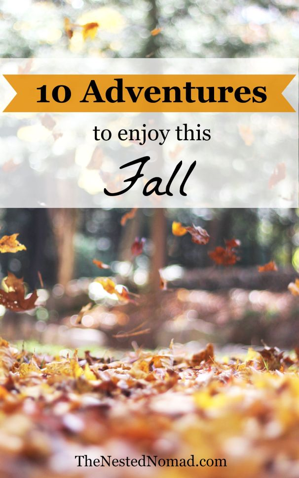 Fall is for new adventures and new beginnings.