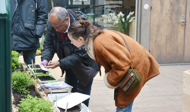 Pop farmer Tayo Tsega offers advice to a visitor
