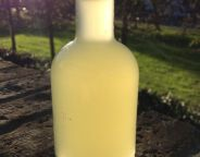 Azorean Milk Liqueur