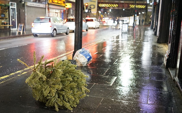 The last Christmas trees in Brixton, Feb 2019