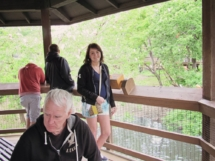 HD Zoo Atrium 04