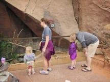 HD Zoo Desert Dome 02