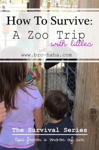 The Survival Series - Zoo Trip With Kids