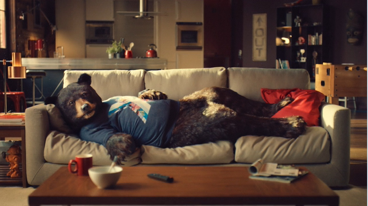 Ed the Sofa Bear has been appearing in Virgin Media's TV campaign.