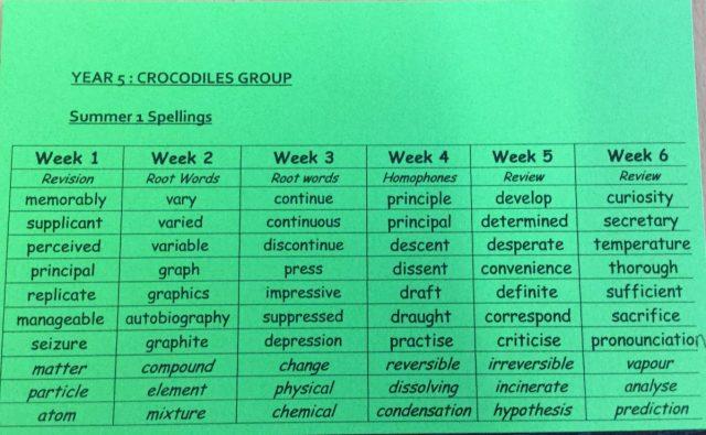 Crocodiles Spellings