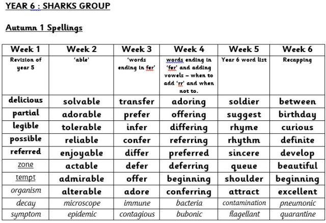 spellings-sharks